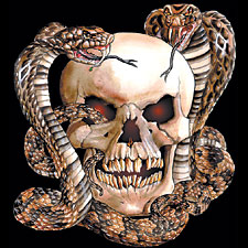 I haven't seen enough skull and snake designs quite yet.