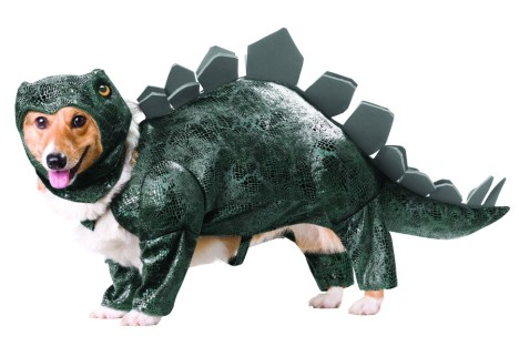 stegosaurus-pet-costume